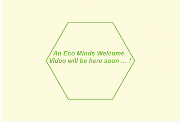 placeholder image saying a video is coming soon.