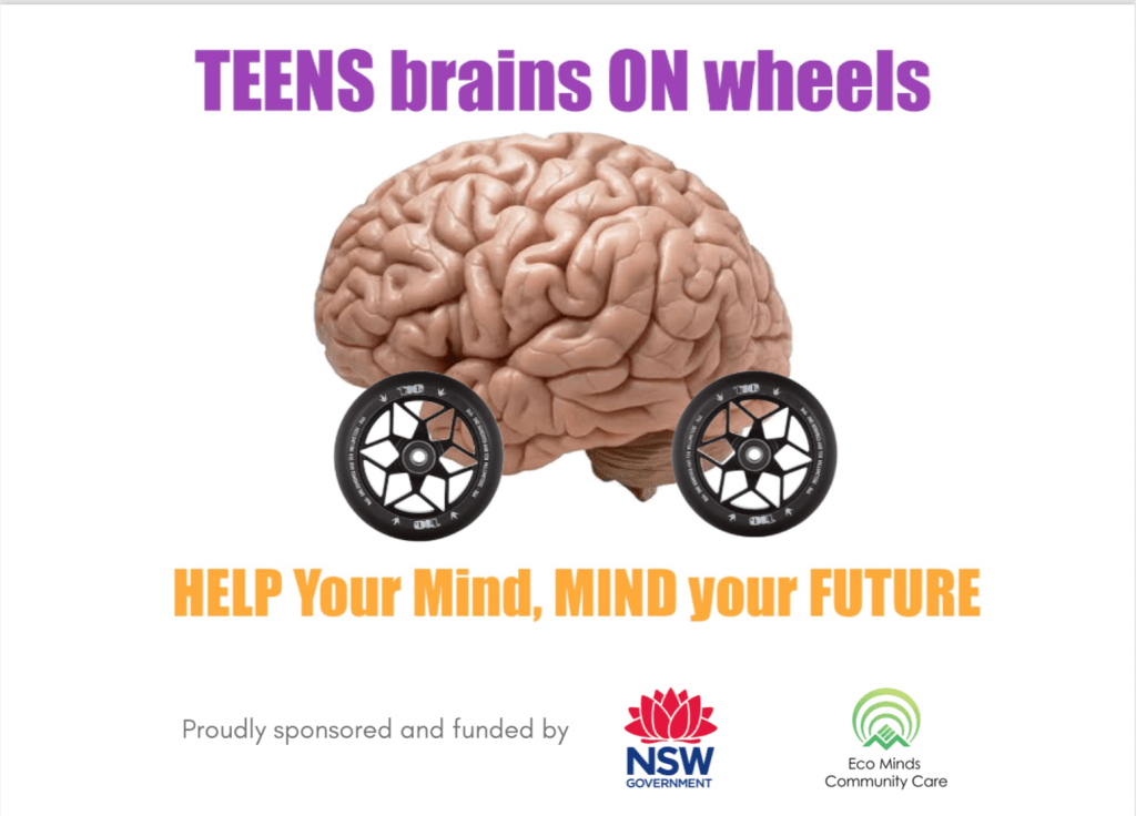 Teen Brains on Wheels project promo banner